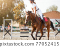 Young girl tapping horse after show jumping course 77052415