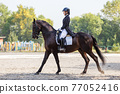 Young girl riding horse at dressage advanced test 77052416