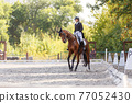 Young girl riding horse at dressage advanced test 77052430