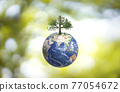 Planet Earth globe ball and growing tree on green sunny blurred background.  77054672
