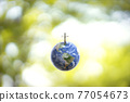 Planet Earth globe ball and growing tree on green sunny blurred background.  77054673