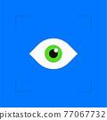 Biometric verification eye identification 77067732