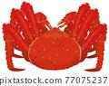 red king crab, crab, crabs 77075237