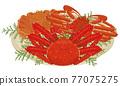 crab, crabs, snow crab 77075275
