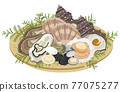 oyster, oysters, turban shell 77075277