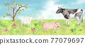 水彩畫 動物 雪羊 77079697