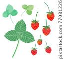 草莓的例證 77081226