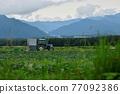 八岳 拖拉機 原野 77092386
