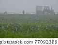 八岳 拖拉機 高地蔬菜 77092389