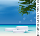 Cosmetic the sea,sky and beach background and premium podium display for product presentation branding and packaging presentation. studio stage with coconut tree leaves. vector design 77093316