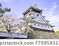 奧古拉城堡是一個美麗的櫻花觀賞時期 77095832