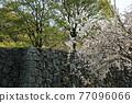 Himeji castle 77096066