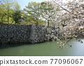 Himeji castle 77096067