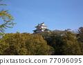 Himeji castle 77096095