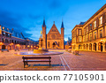 The Hague, Netherlands at the Ridderzaal 77105901