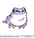 日本樹蛙 日本樹蟾 樹蛙 77108017