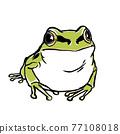 日本樹蛙 日本樹蟾 樹蛙 77108018
