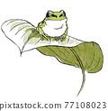 日本樹蛙 日本樹蟾 樹蛙 77108023