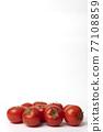 蕃茄 番茄 蔬菜 77108859