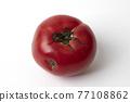 蕃茄 番茄 蔬菜 77108862