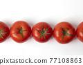 蕃茄 番茄 蔬菜 77108863