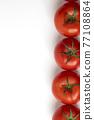 蕃茄 番茄 蔬菜 77108864