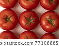 蕃茄 番茄 蔬菜 77108865