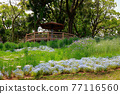 公園 園林綠化 花園 77116560