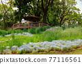 公園 園林綠化 花園 77116561