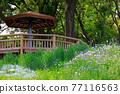 公園 園林綠化 花園 77116563