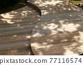木製 公園 花園 77116574