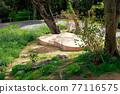 營地 露營 公園 77116575