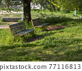 翠綠 鮮綠 長凳 77116813