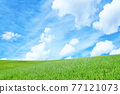 清新的夏日藍天和高原景觀 77121073