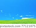 清新的夏日藍天和高原景觀 77121075