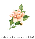 Yellow flower. Floral illustration on white background 77124369