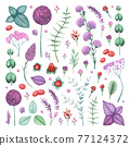 Watercolor Garden Flowers and Herbs Elements Set 77124372