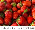 草莓 水果 背景素材 77124944