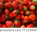 草莓 水果 背景素材 77124946