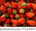 草莓 水果 背景素材 77124947