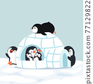 Cute  Penguins Igloo ice house in winter 77129822