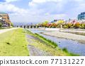 Kamo River in spring 77131227