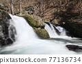 森沒有瀑布 77136734