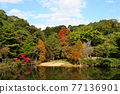 Hyogo Prefectural Kabutoyama Forest Park Mikuruma Pond with a wide variety of autumn leaves in the center among the green trees 77136901