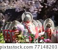 親愛的櫻花和地藏 77148203
