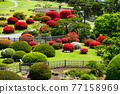 偕樂園 日本園林 日式花園 77158969