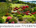 偕樂園 日本園林 日式花園 77158970