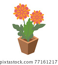 Cartoon vector illustration isolated object botanic garden nature flower pot 77161217
