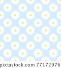 Small white daisy seamless pattern flower background 77172976