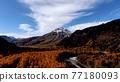 kamikochi, autumn, autumnal 77180093